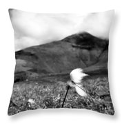 Caherconree Cotton Throw Pillow