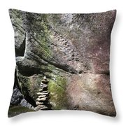 Cairn Rock Stack At Jones Gap State Park Throw Pillow by Kelly Hazel
