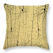 Cajal Drawing Of Microscopic Structure Of The Brain 1904 Throw Pillow