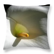 Cala Lily In Light And Shadow Throw Pillow