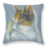 Calico Callie Throw Pillow