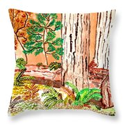 Calif. Redwoods Throw Pillow