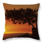 California, Big Sur Coast Throw Pillow