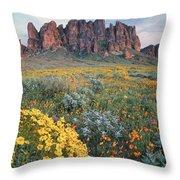 California Brittlebush Lost Dutchman Throw Pillow