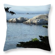 California Coast Vii Throw Pillow