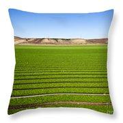 California Farm 14pdxl069 Throw Pillow
