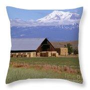 California Hay Barn Throw Pillow