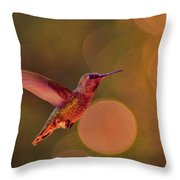 California Hummingbird Throw Pillow