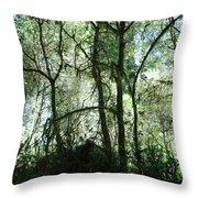 California Jungle Throw Pillow
