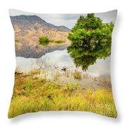 California Kaweah Lake Scene Throw Pillow