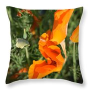 California Morning Throw Pillow