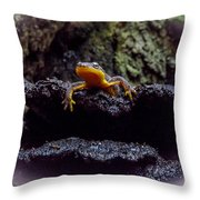 California Newt 2 Throw Pillow
