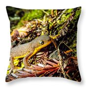 California Newt 3 Throw Pillow