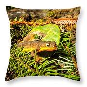 California Newt 4 Throw Pillow