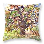 California Oak In Winter Throw Pillow