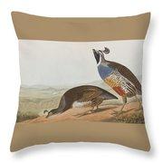 California Partridge Throw Pillow