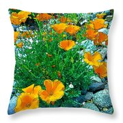 California Poppie In River Rock Throw Pillow