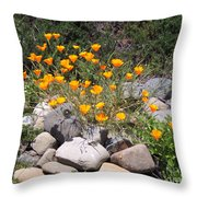 California Poppies Photograph Throw Pillow