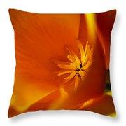 California Poppy 1 Throw Pillow