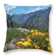 California Poppy And Mountain Panorama Throw Pillow