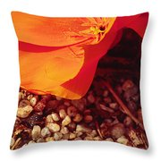 California Poppy And Scallop Shell Throw Pillow