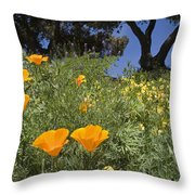 California Poppy Eschscholtzia Throw Pillow
