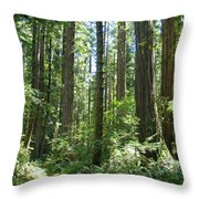 California Redwood Trees Forest Art Prints Throw Pillow