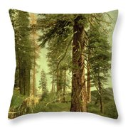 California Redwoods Throw Pillow