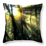 California Redwoods Throw Pillow by Richard Ricci