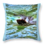 California Sea Lion-1611 Throw Pillow