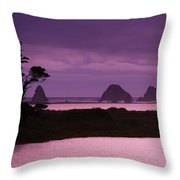 California, Sonoma Coast Throw Pillow