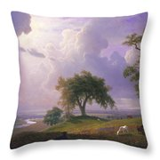 California Spring, C. 1875 Throw Pillow