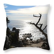 California Sun Throw Pillow