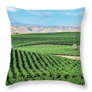 California Vineyards 1 Throw Pillow