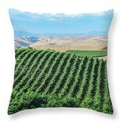 California Vineyards 2 Throw Pillow