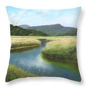 California Wetlands 2 Throw Pillow
