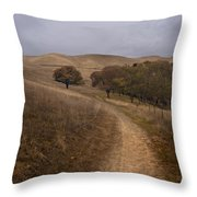 California Winter Throw Pillow