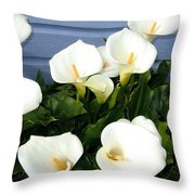 Calla Lilies- Oregon Throw Pillow