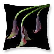 Calla Lilies Take A Bow Throw Pillow