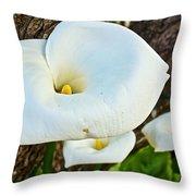 Calla Lily At Carmel Mission-california Throw Pillow