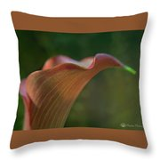 Calla Lily Close-up Throw Pillow