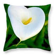 Calla Lily Closeup At Pilgrim Place In Claremont-california Throw Pillow