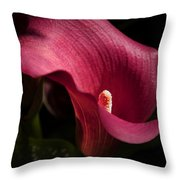 Calla Lily Throw Pillow by Joanne Smoley