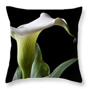 Calla Lily With Drip Throw Pillow