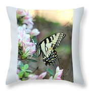Callaway Butterfly Throw Pillow