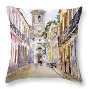 Calle Fuente Alhabia Throw Pillow