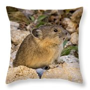 Calling All Pica Throw Pillow