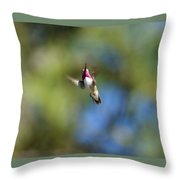 Calliope Hummingbird In Flight Throw Pillow