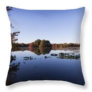 Calm On The Pond Throw Pillow