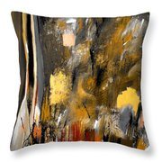 Calm Out Of Chaos 2010 Throw Pillow